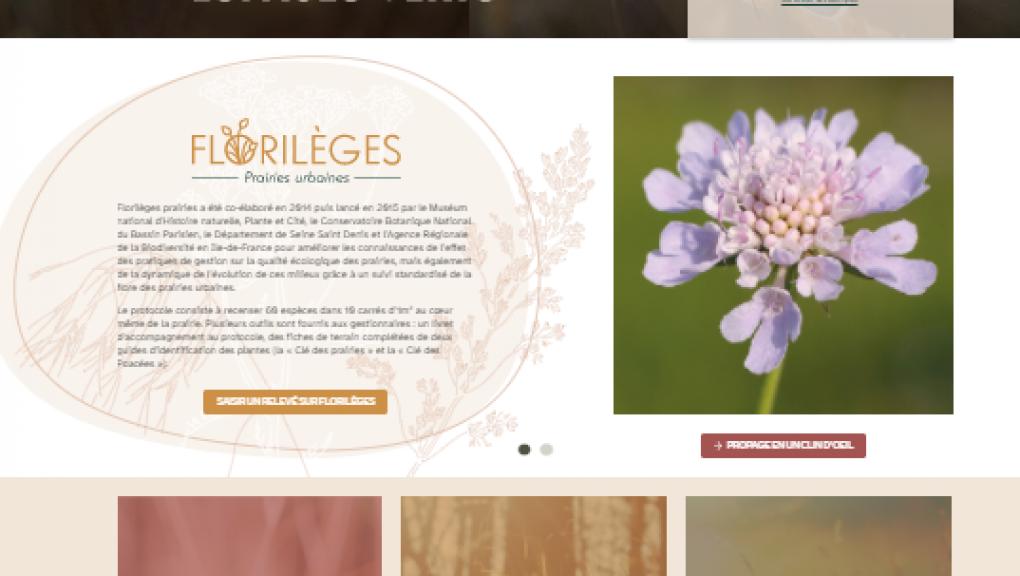 propage_site