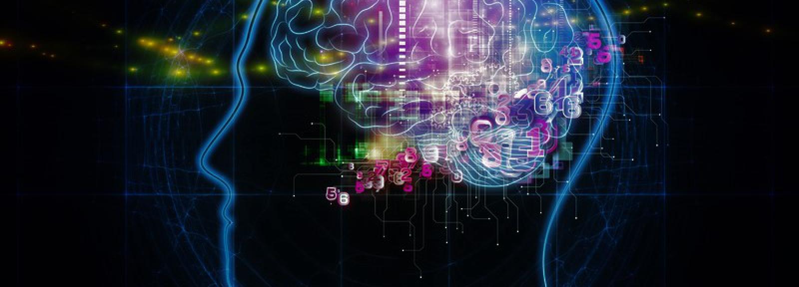 cerveau © A Health Blog