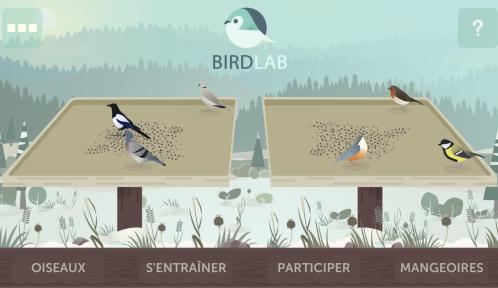 birdlab-accueil.png
