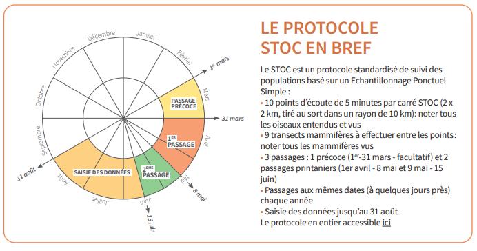 protocole stoc
