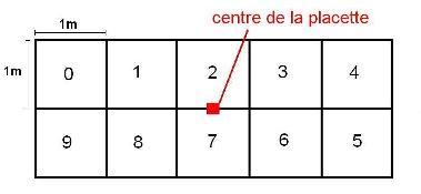 detailsprotocole_fig3_site_ok_20090316172949_20090316172957.jpg
